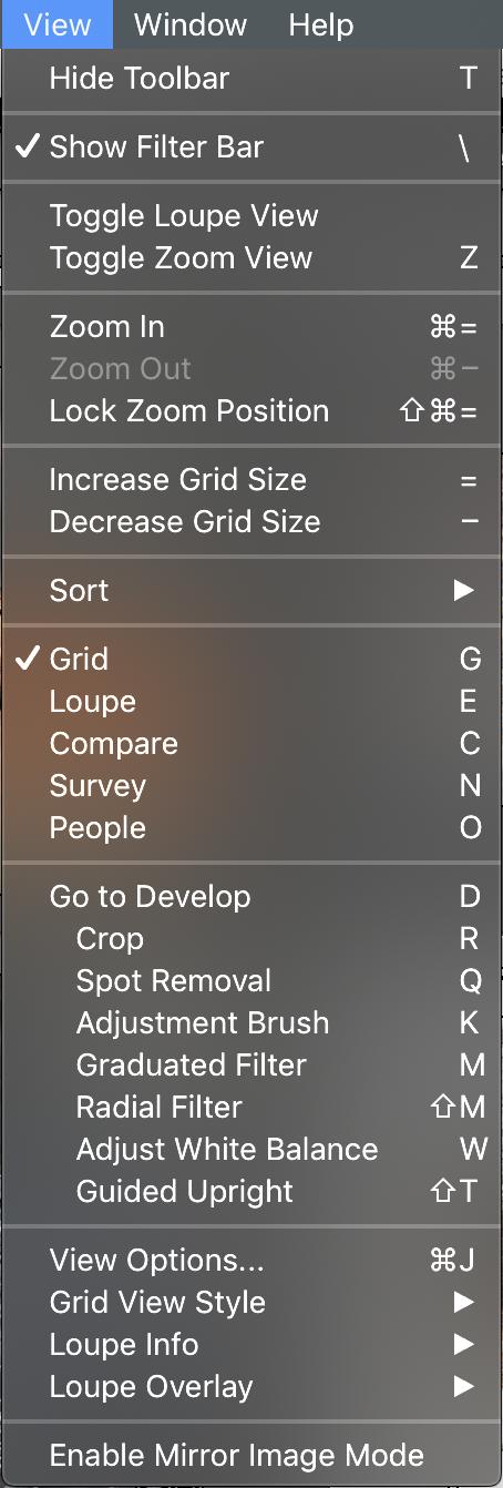 Adobe Lightroom Filter Bar