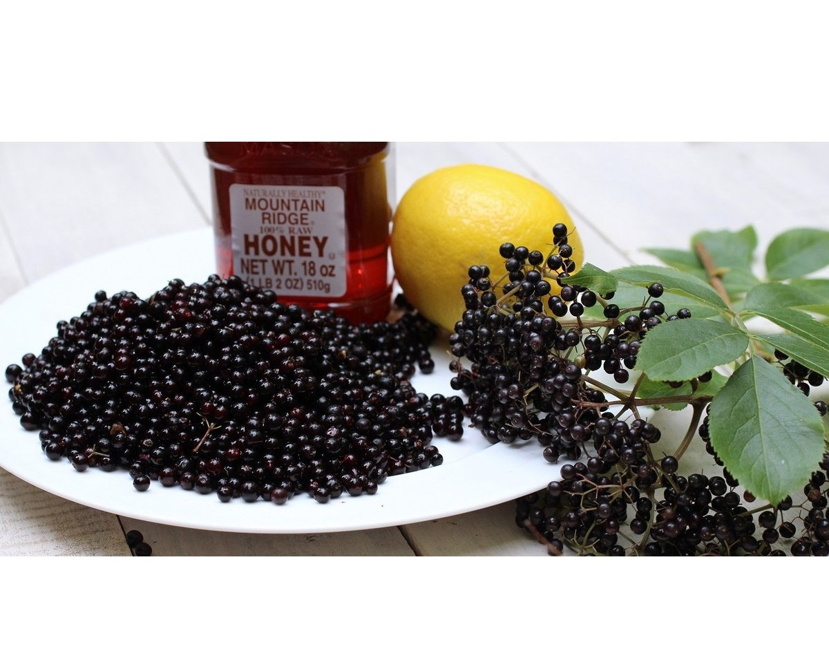 Local Honey & European Elderberries