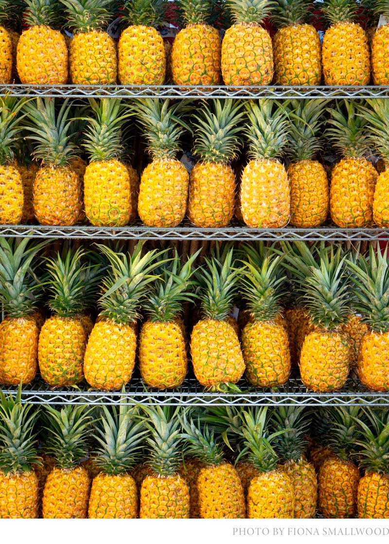 tropical home decor ideas with warm color palettes featuring rows of pinapples