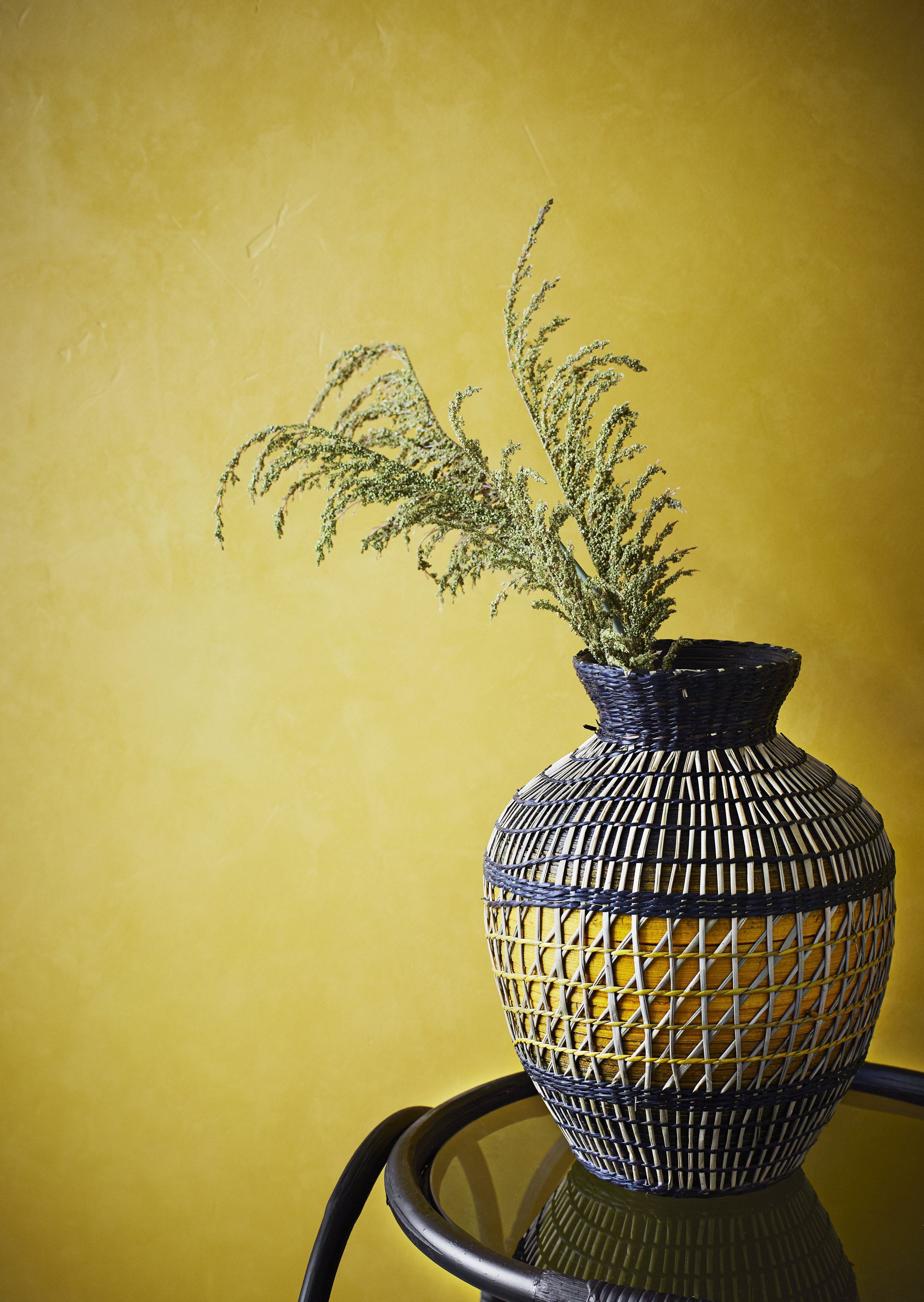 Vaza Seagrass