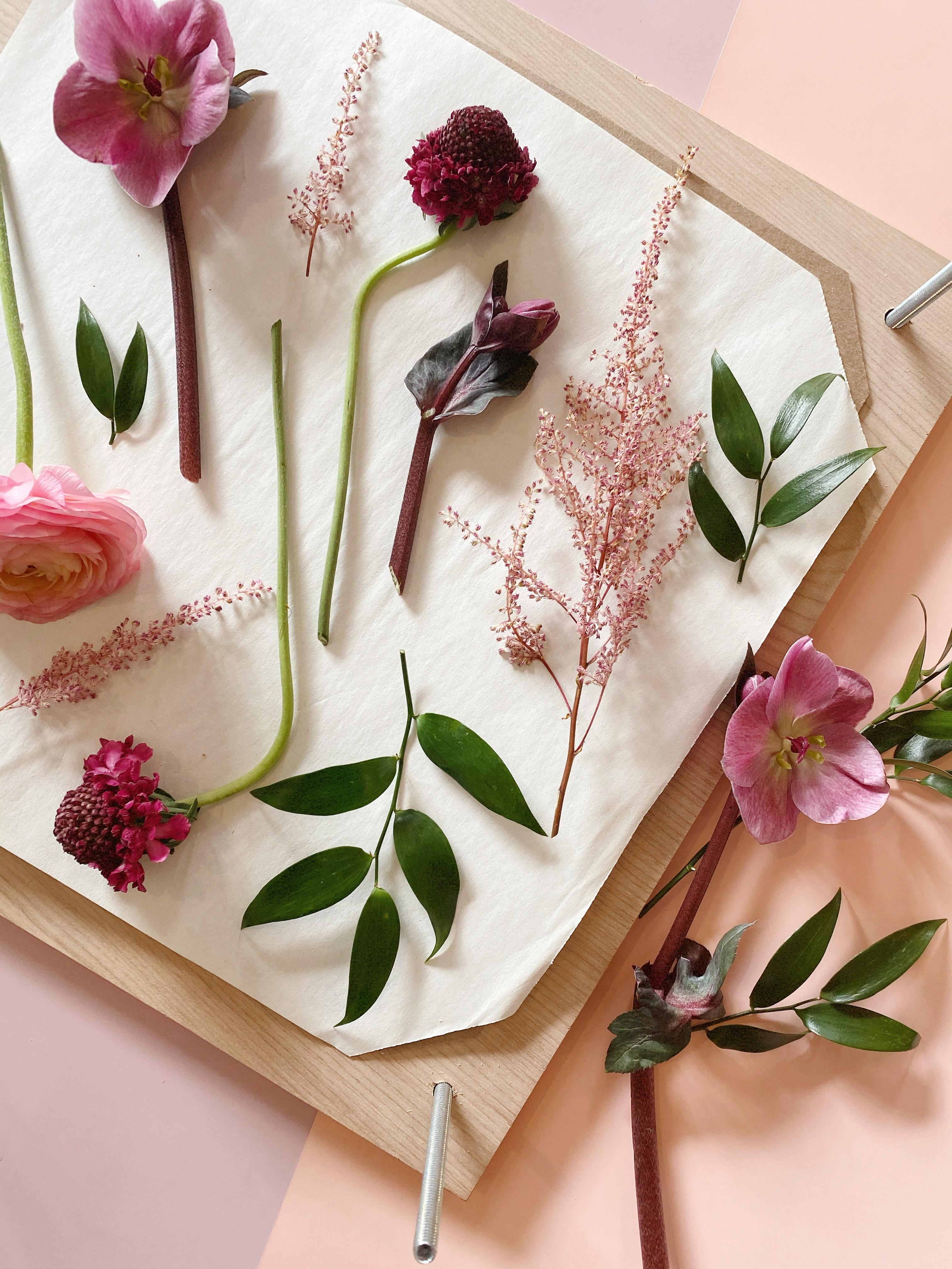 Frame Floral Preservation