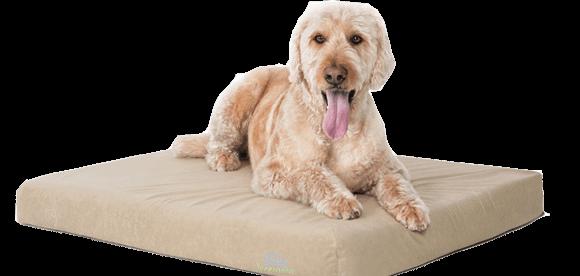 COMFORT DELUXE MEMORY FOAM DOG BED