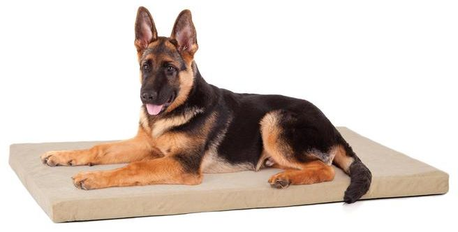 PREMIER MEMORY FOAM CRATE BED
