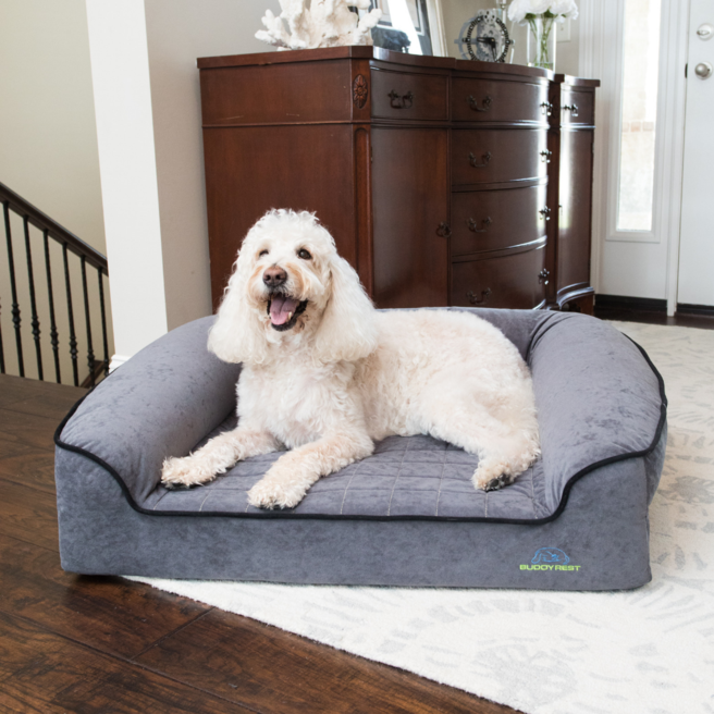 Romeo Advanced Orthopedic Bolster Dog Bed