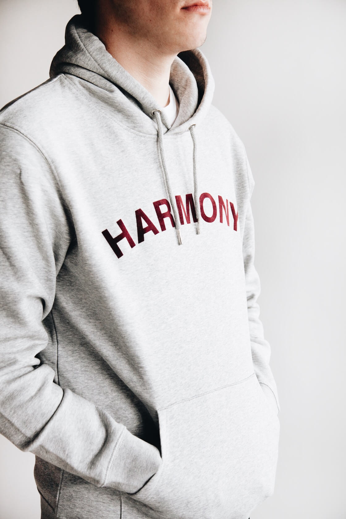 harmony paris sany velour sweatshirt on body