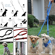 6 Way Multi Function European Trainer Styled Dog Leash