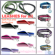 Leashes and Collars for Pets