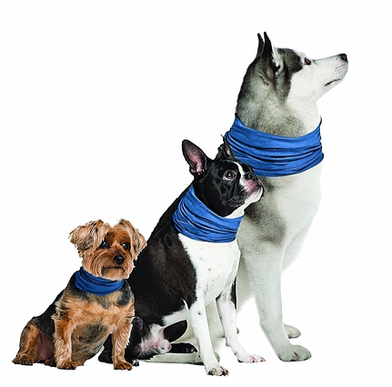Cooling Bandanas and Scarves for Pets