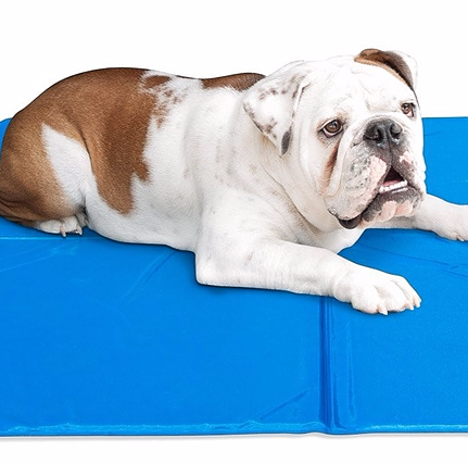 Cooling Pads and Beds for Pets
