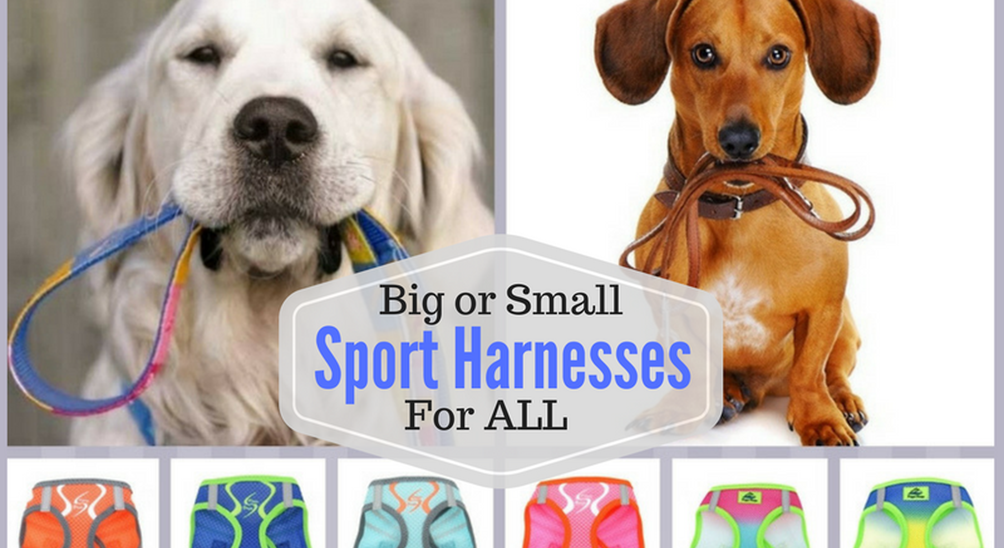 Pet Harneses for al sized dog breeds - over the head halters, step in vests, wrap-around jackets