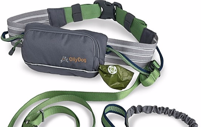 Hands Free Belt pouch and leash