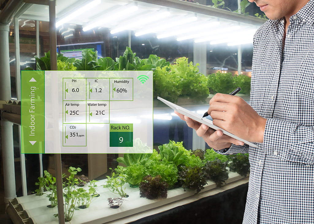 Indoor Farming with Optimal Growth