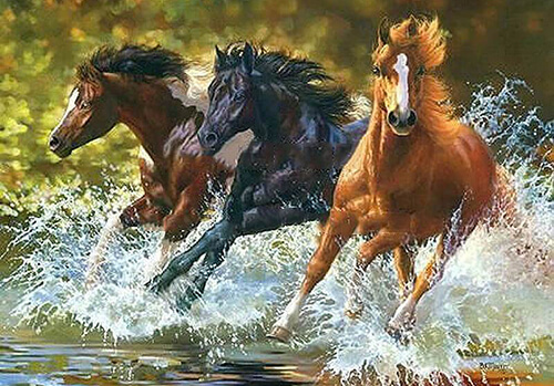 Malen nach Zahlen Pferdeherde