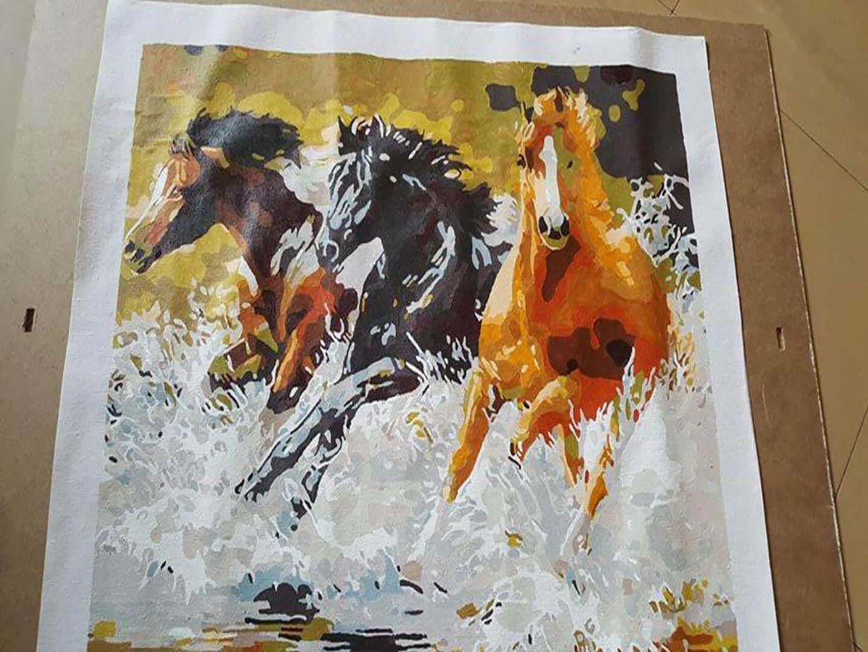 Malen nach Zahlen Pferde Bild Bewertung