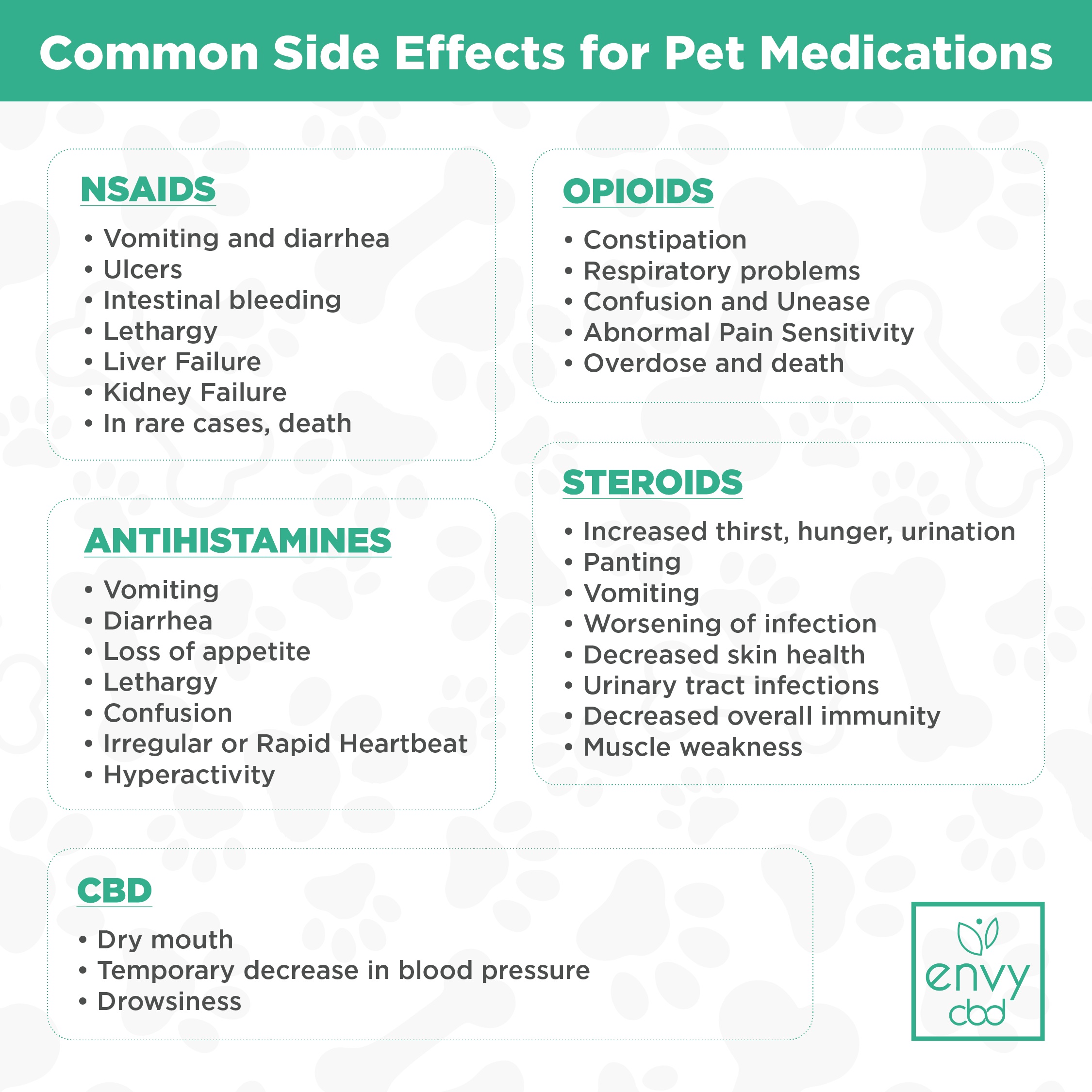 Common Side Effects of Pet Medications