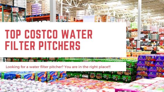 Water Filter Pitcher at Costco