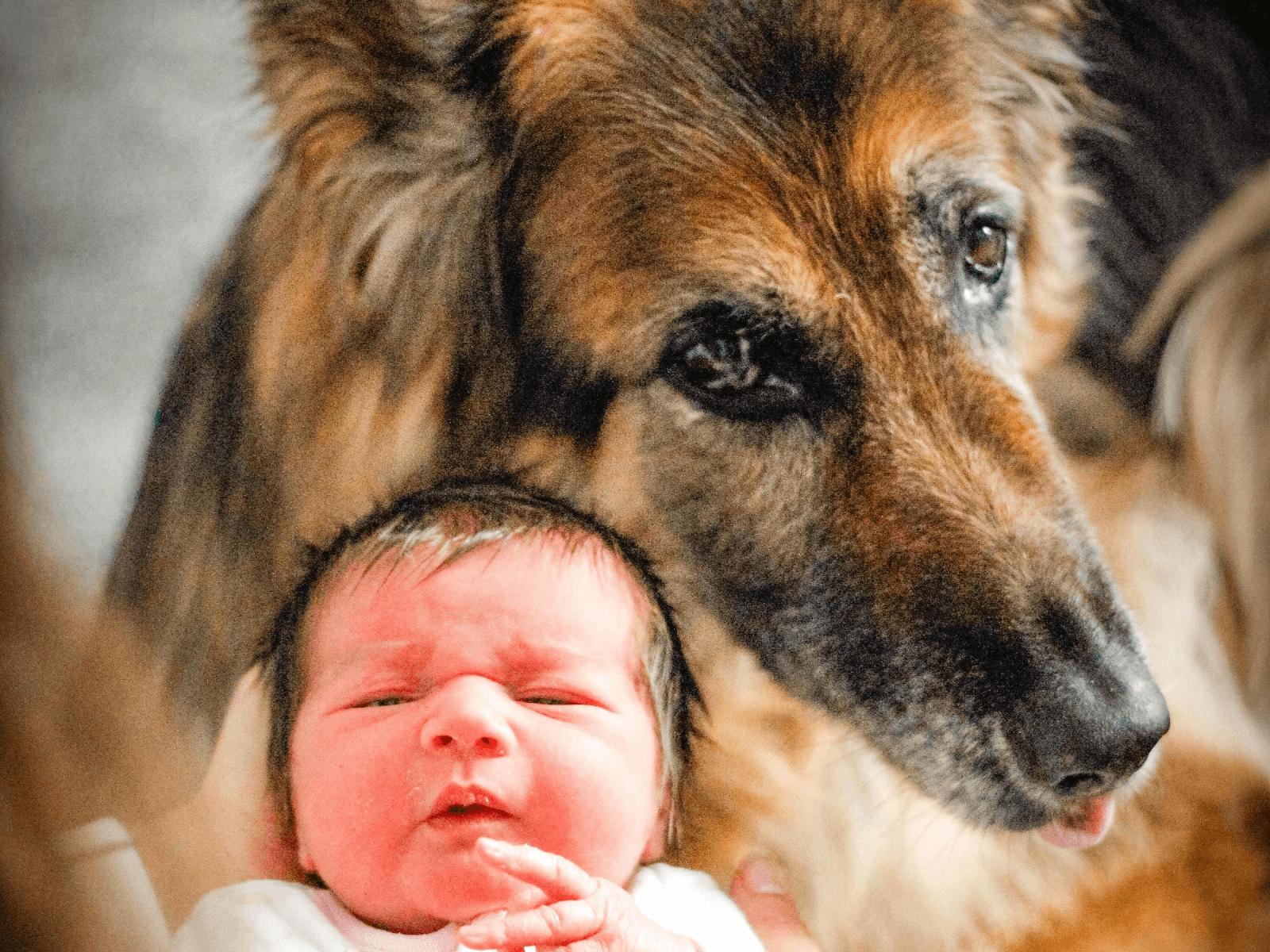 awake-baby-with-dog