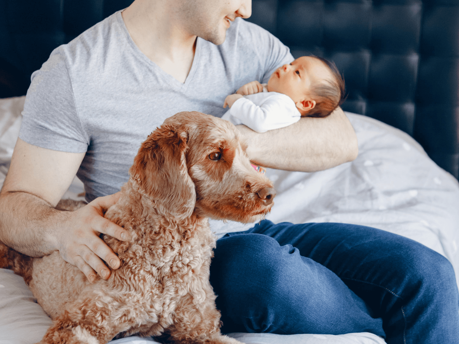 Introducing-new-baby-to-a-dog