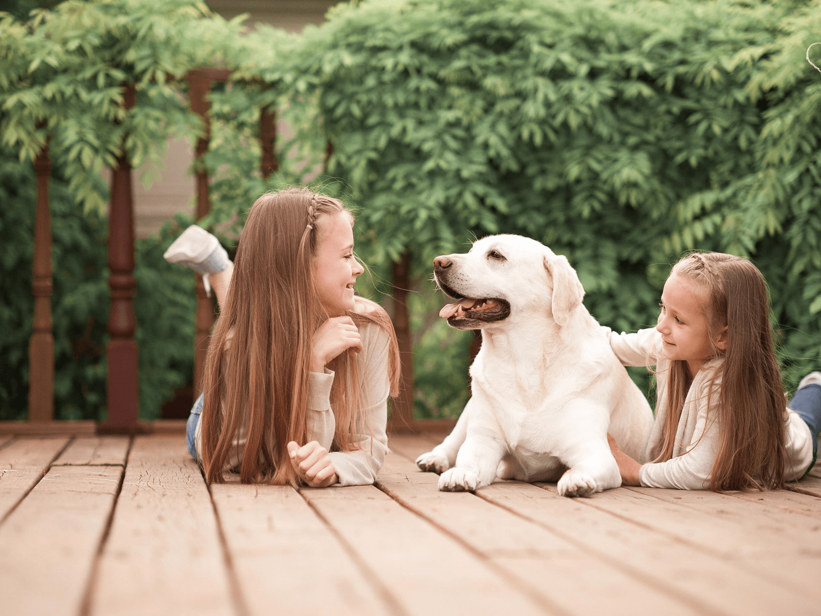 family-dog-sitting-with-kids