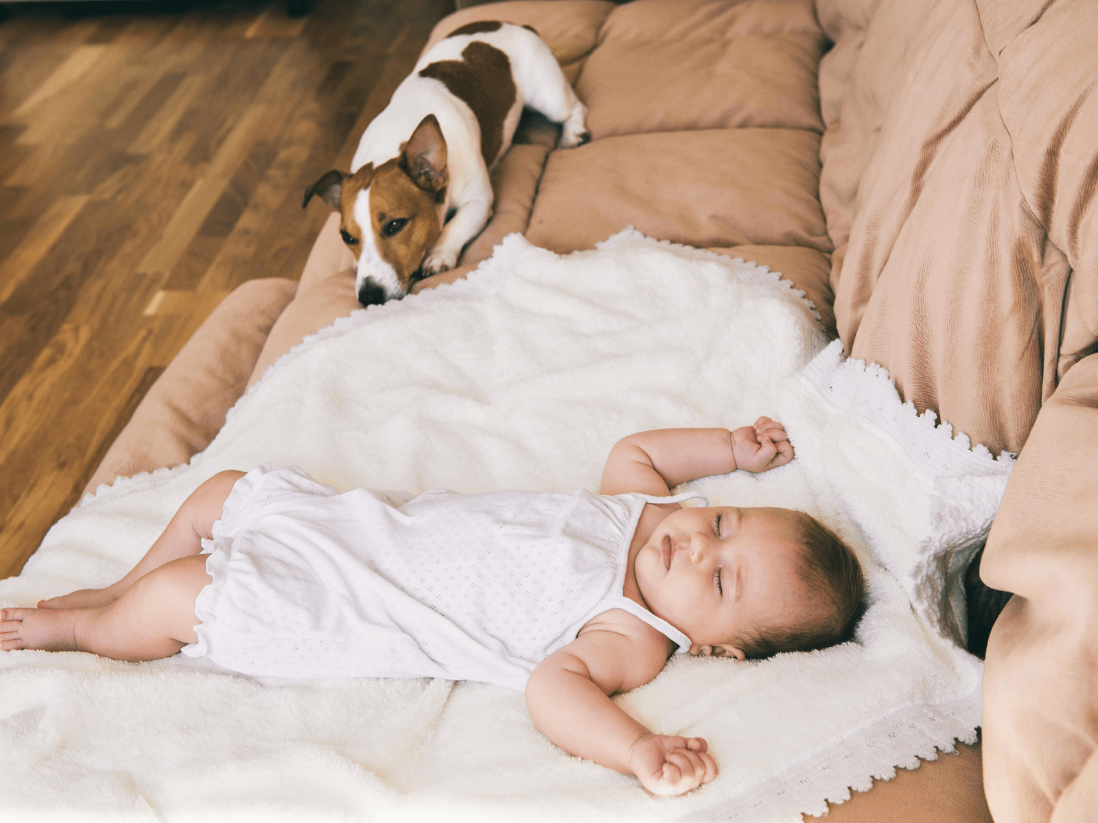 dog-guarding-sleeping-baby