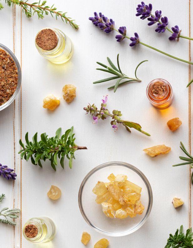 Fresh herb tincture ingredients