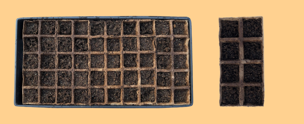 Top Down View of a Peat Strip Tray filled with Wet Soil