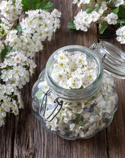 Herbal tincture with fresh flower petals