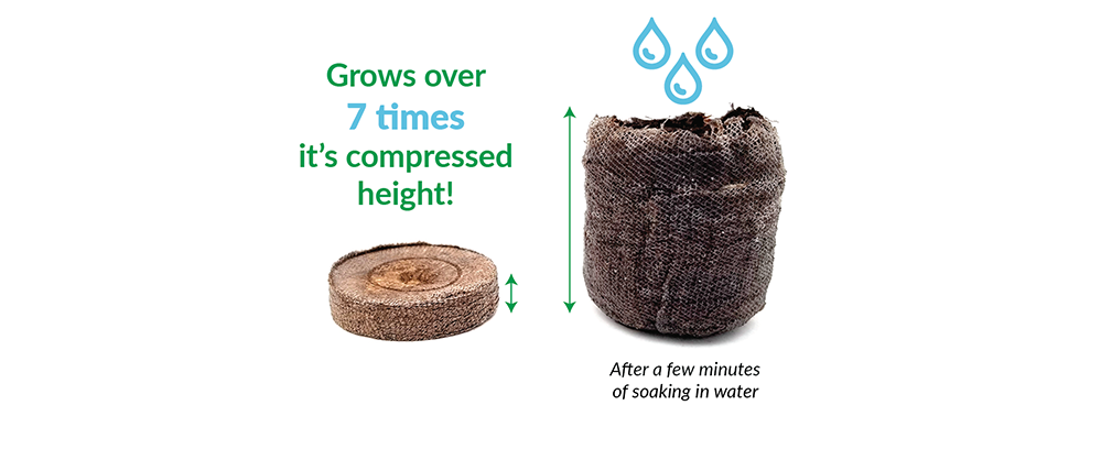 Jiffy Peat Pellets expanding 7 Times it's compressed height with the addition of warm water