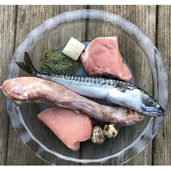 فكرة الوجبة الغذائية الخام #28 الماكريل ، لحم الخنزير ، رقبة الديك الرومي ، بيض السمان ، مرق العظام ، وسبيرولينا + ملحق قمح