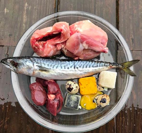 قم بتغذية وجبة طعام الكلب الخاص بك