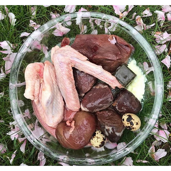 Meal idea #78 raw dog food  Turkey hearts, pork heart, duck wing, lamb kidney, quail eggs, raw goat milk, and Super Cube (herbs+vegetables).