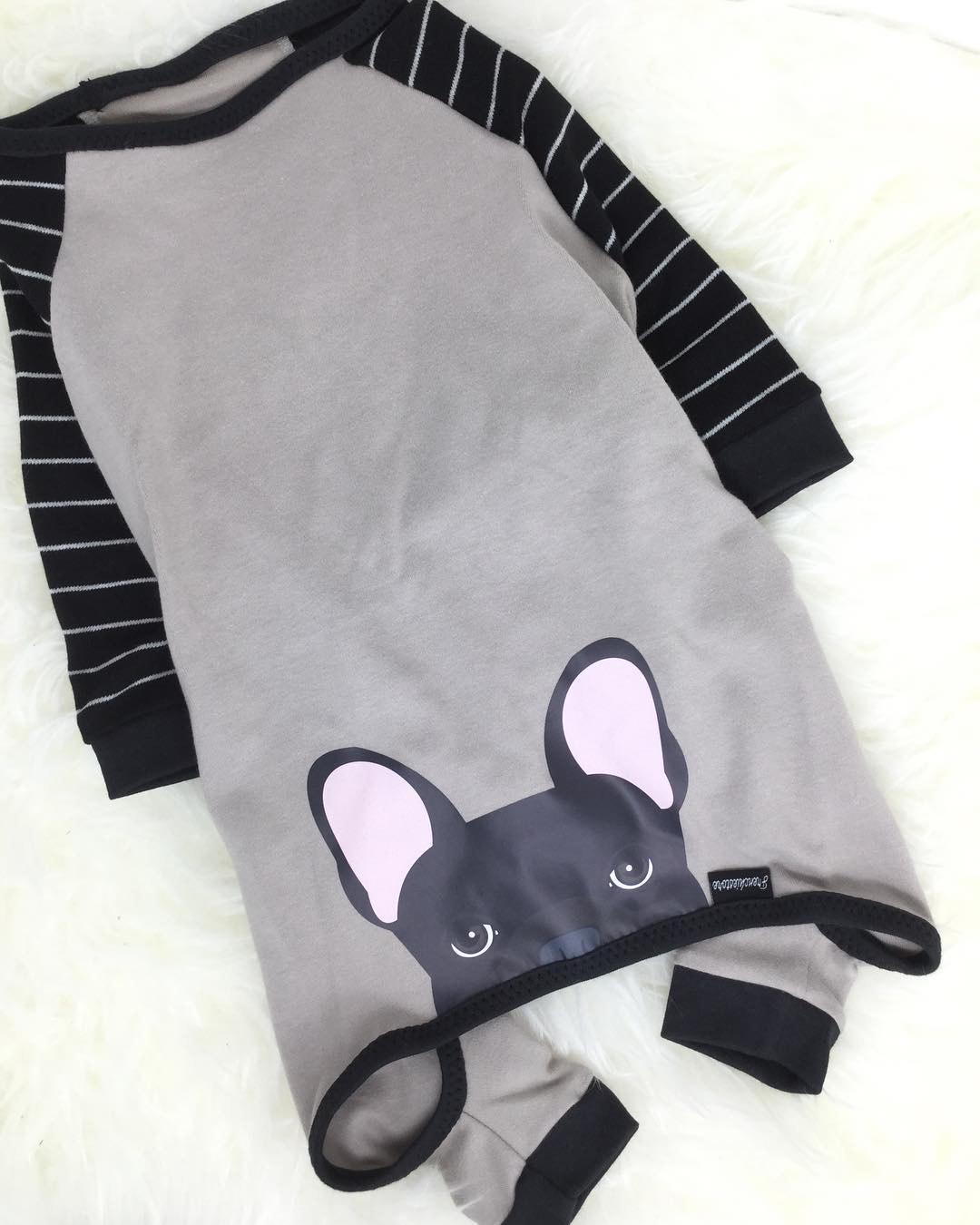 ropa para perros frenchie orgánica