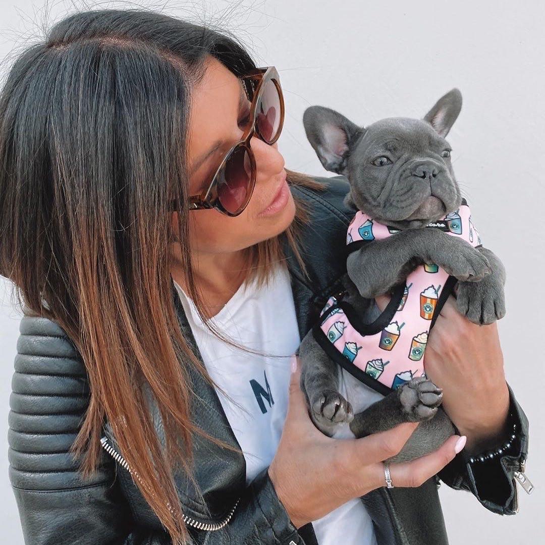 Arnés Bulldog Francés | Arnés de salud versátil | Pink StarPup
