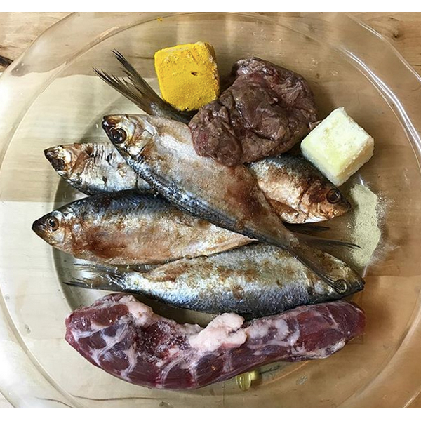 Raw Food for your French Bulldog Meal Idea #9  Monster mash, thread herring, duck neck, raw goats milk, turmeric paste, green lipped mussel, vitamin E supplement