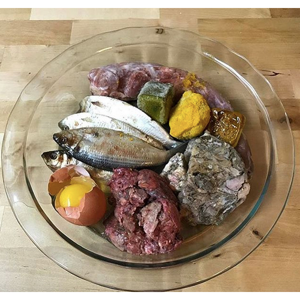 Raw food for your French Bulldog Turkey neck, ground beef lung, green tripe, egg and shell, turmeric paste, local honey, salmon oil, , vit E, and special k-cube