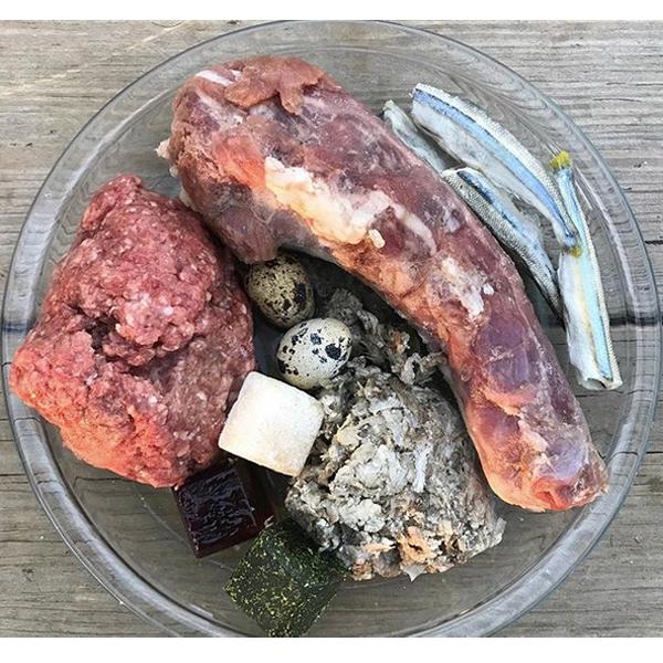 Switching to raw dog food meal idea #62  Ground beef, green tripe, turkey neck, smelt, quail eggs, myoglobin cube, Super Cube (herb+veg), and bone broth.