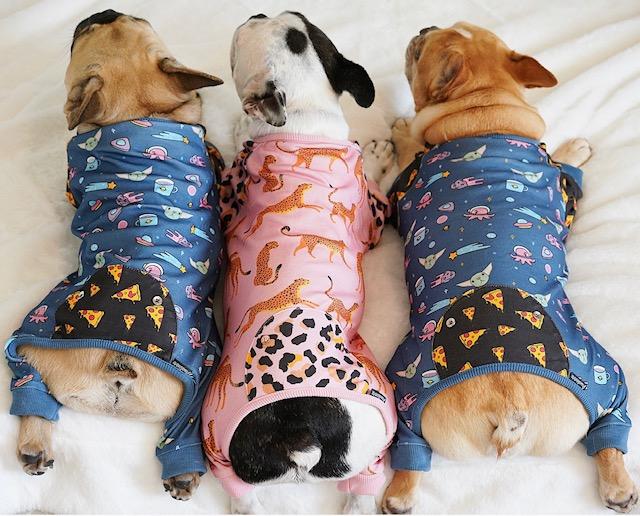 doggie organic pajamas