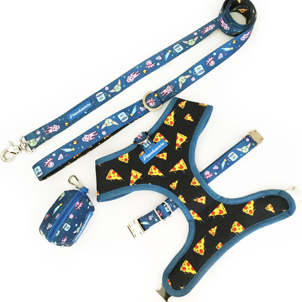 Front leading reversible dog harness
