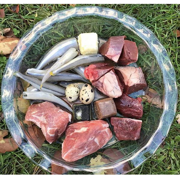 Raw dog food boneless meal idea #16  Pork, beef heart, smelt, quail eggs, beef liver cube (with blueberries and ACV), coconut oil, spirulina, vitamin e, and raw goats milk.