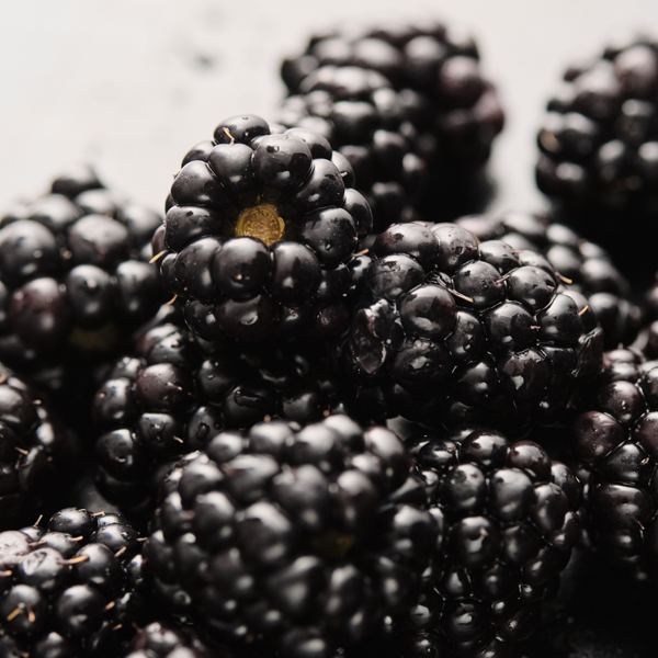 How to incorporate blackberries in your Frenchie dog diet