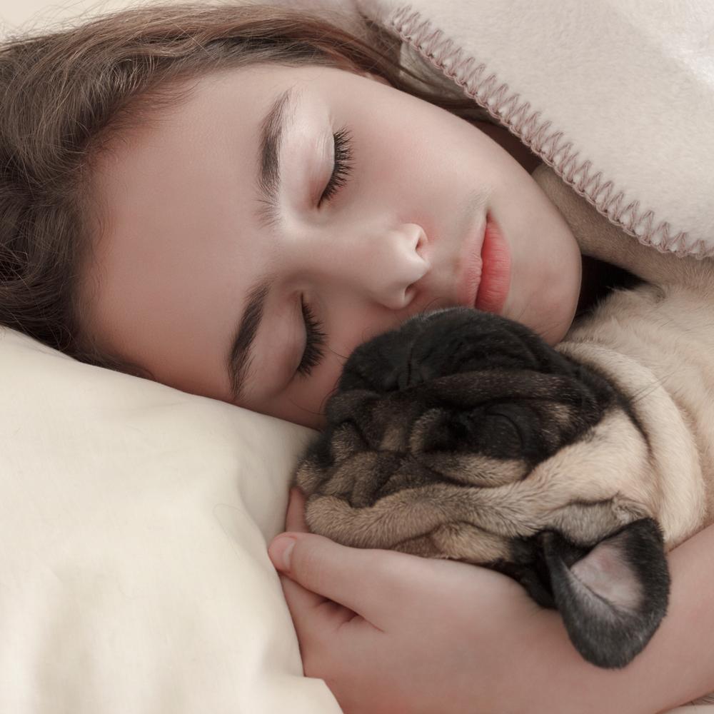 ¿Cuánto tiempo duermen los cachorros Pug por la noche?