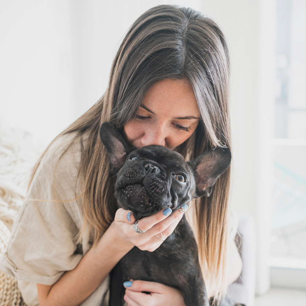 Causes of pimples in French bulldogs