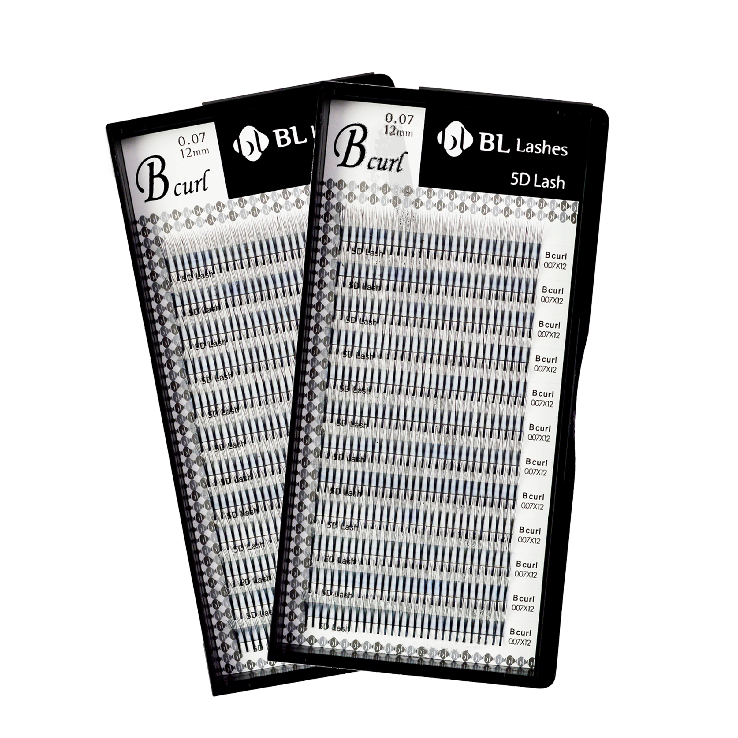 Shop 5D Lashes