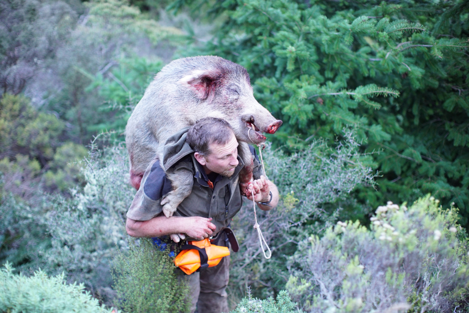 Game Gear Pig Hunting Gear NZ