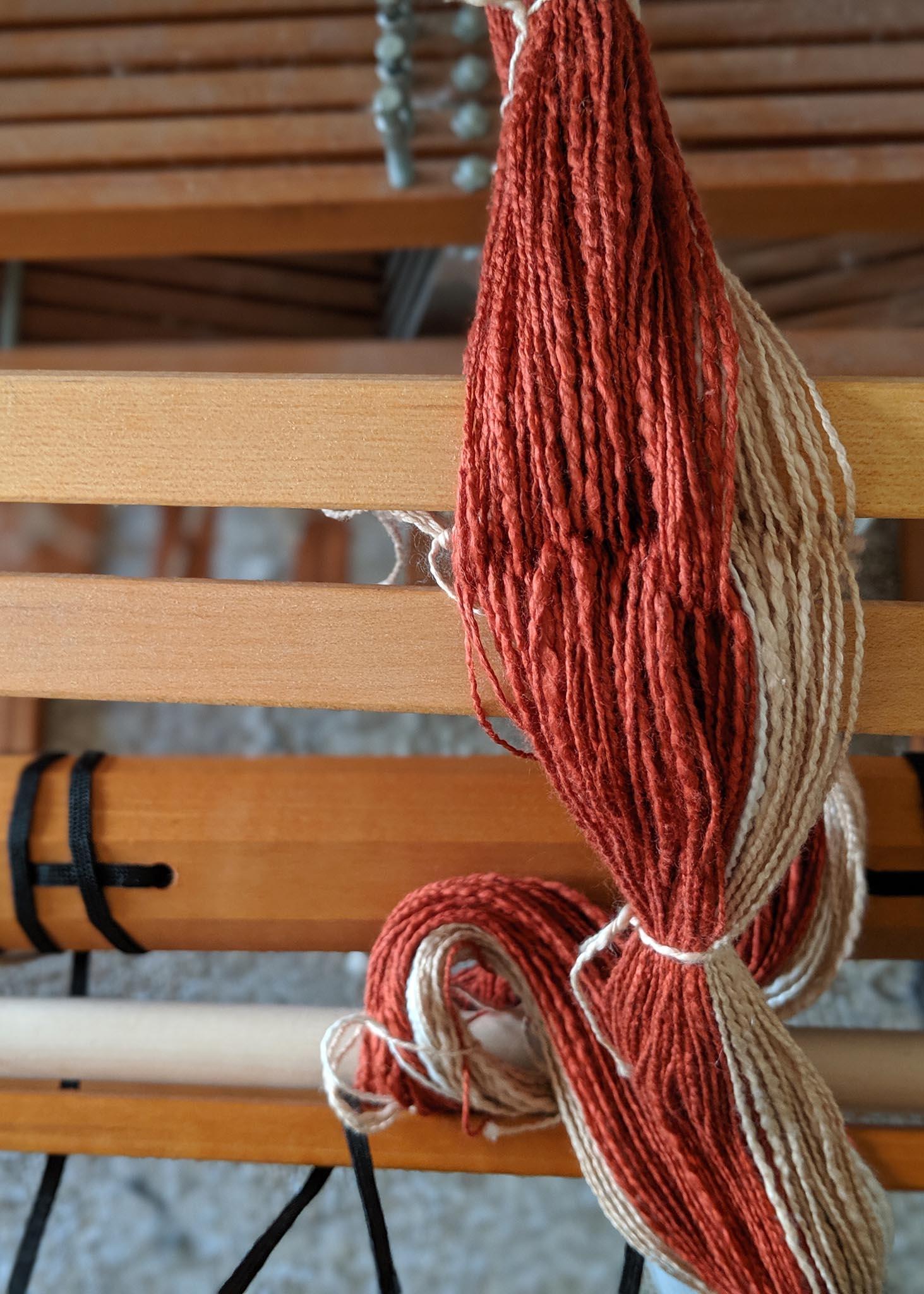 Warp for weaving