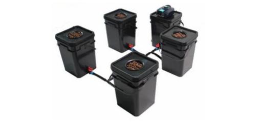 4 Bucket RDWC System