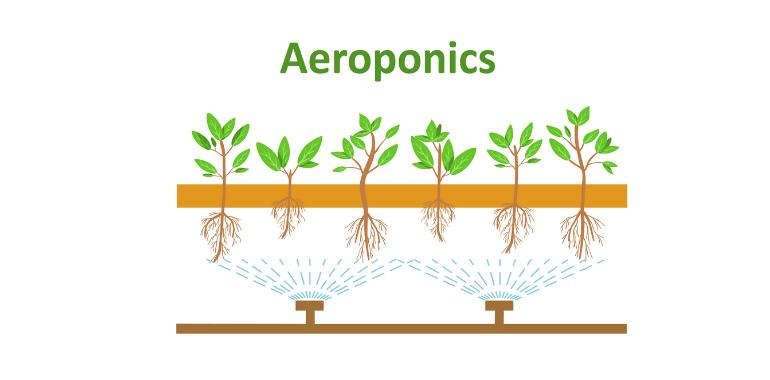 Aeroponic System Diagram