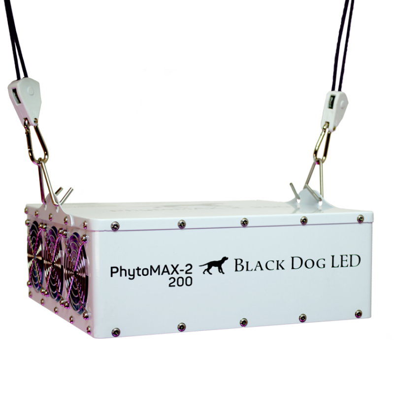 Black Dog LED Grow Lights Australia