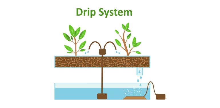 Hydroponic Drip System Diagram
