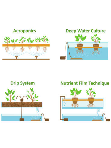 Types Of Hydroponic Systems Diagram